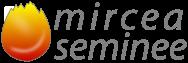 Logo Mircea Seminee Home